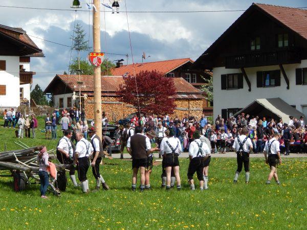 maibaum-huettenberg-2014 049